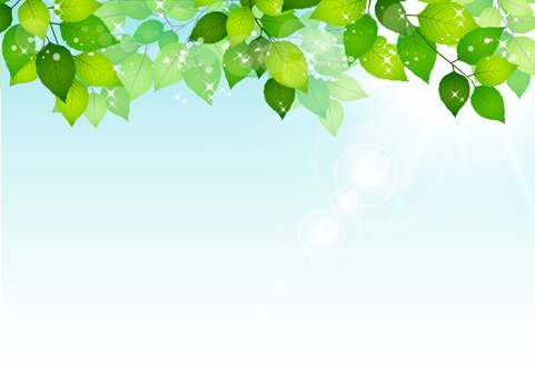 Fresh green material 207