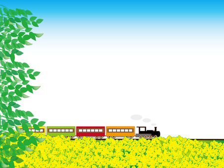 Locomotives and rape blossoms
