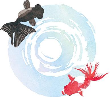 水彩風金魚