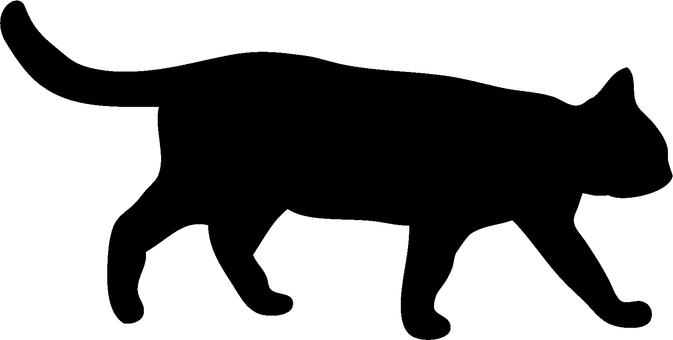 Cat's silhouette (walk)