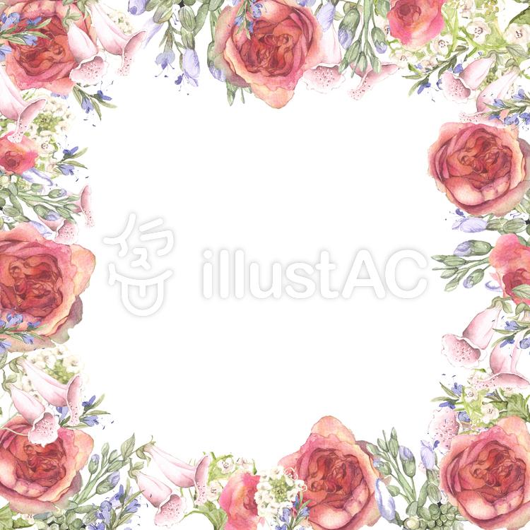 微妙な色のバラとストックの花枠のイラスト