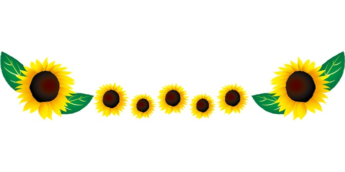 Sunflower line