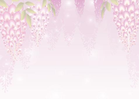 등나무 축제 배경