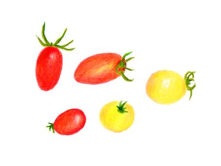 Mini tomato (color pencil drawing)