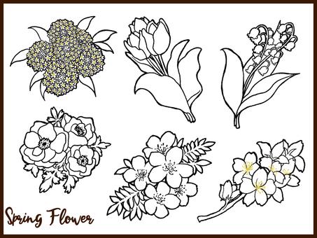Spring flower set line drawing