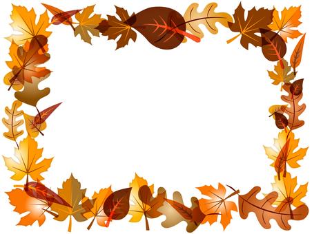 秋天的樹葉圖像