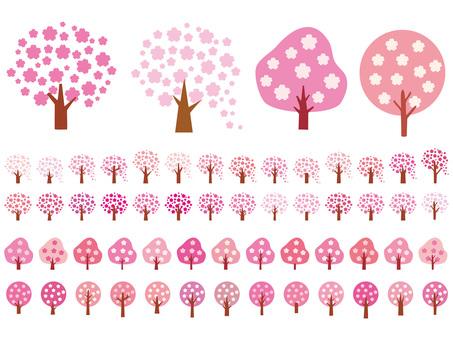 Sakura Sakura Sakura Cherry Tree Simple icon background
