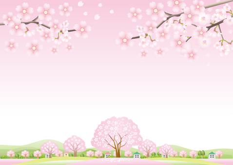 Cherry blossoms scenery image