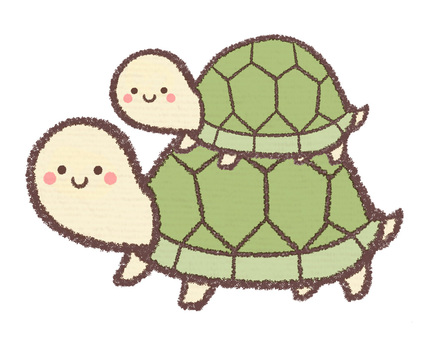 Turtle parent and child