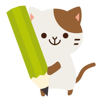 Pencils cat