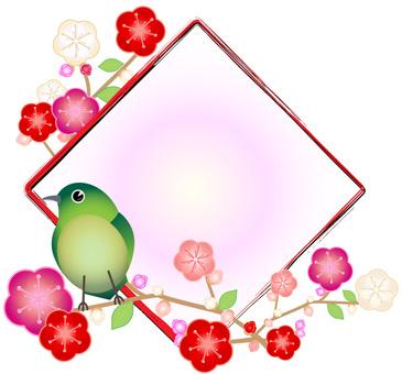 Ugly and plum diamond shaped frame 01