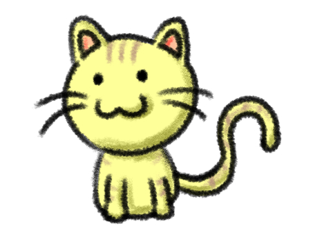 Cat tiger cat cute