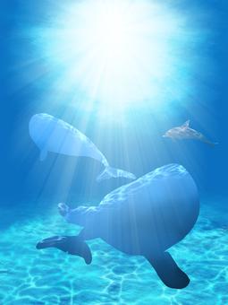 In the sea: 2 (dolphin silhouette)