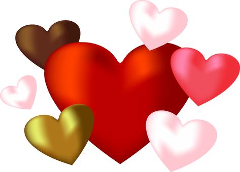 心臟部位透明