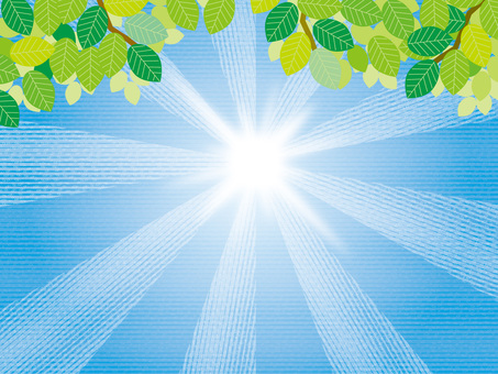 Sun and seasons (13) Summer fresh green and sunlight A