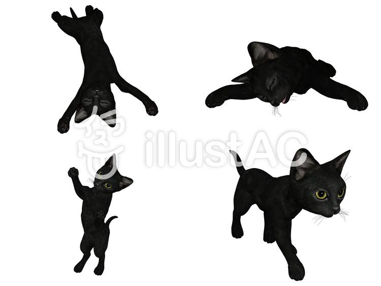 黒子猫四態のイラスト