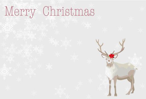 Reindeer's Christmas Card 3