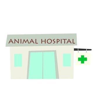 동물 병원