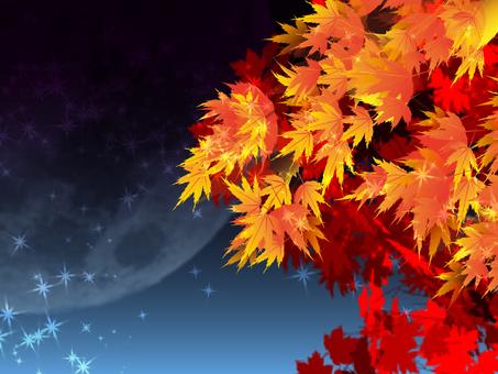 가을 단풍과 달