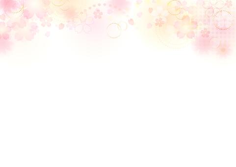 Cherry blossoms 134