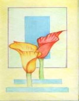 "Flowers ""Color"""