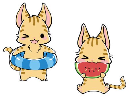 Tiger cat summer illustration (floating ring & watermelon)