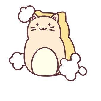 Cat's sponge