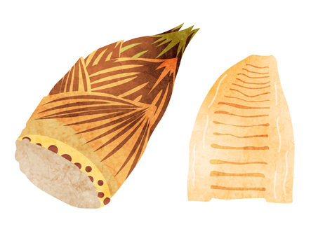 Ingredients_Vegetable_Takenoko_Watercolor