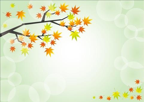 Autumn background 8