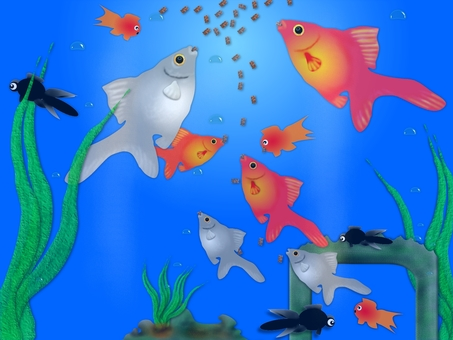 Goldfish aquarium coloring (2115)