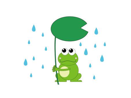 Frog rain trail