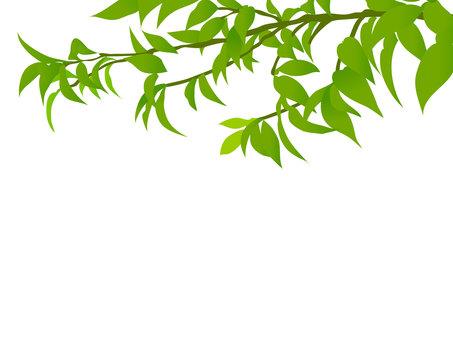 Tree branch frame