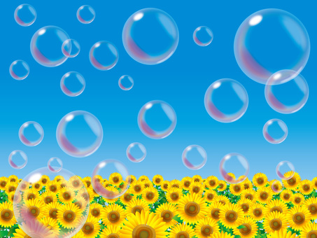 Soap bubble (8) Sunflower field