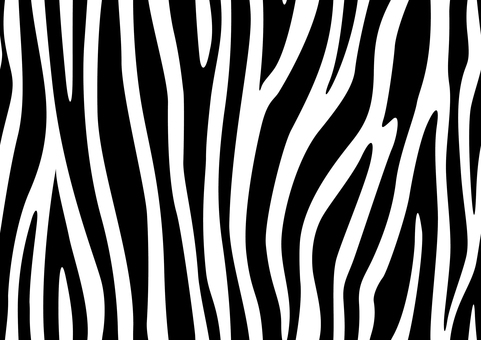 Zebra pattern animal pattern wallpaper fur