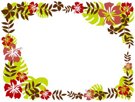 Hawaiian Frame