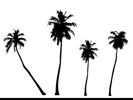 Palm trees silhouette set
