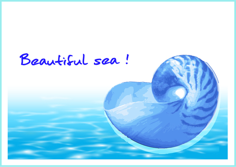 Beautiful blue water and shell message card