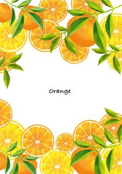 果物オレンジ