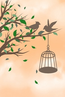 Bird illustrations (background orange)
