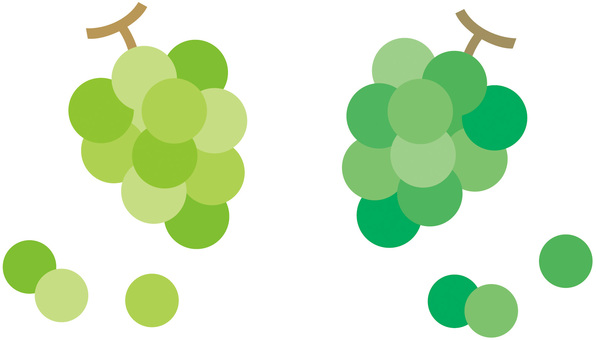 Bunch Grapes (Muscat)