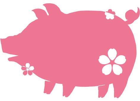 돼지 (벚꽃) 2