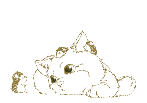 Hedgehog and kitten