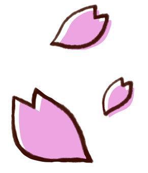 Cherry blossoms petals 03