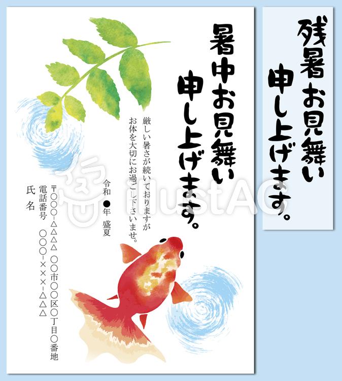 暑中見舞い 残暑見舞い 金魚 水彩 葉書のイラスト
