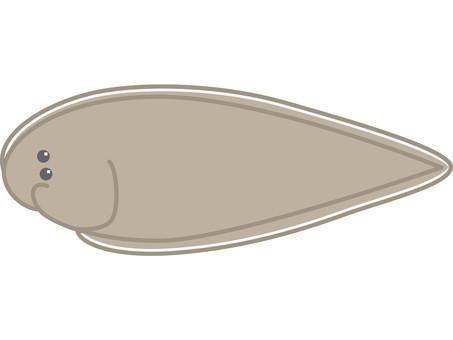 Kuroushinoshita