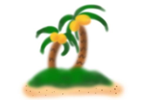 Palm tree (no background)