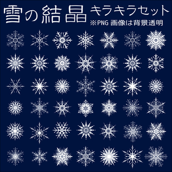 Snow crystal icon material collection Ice winter January December Snow flowers