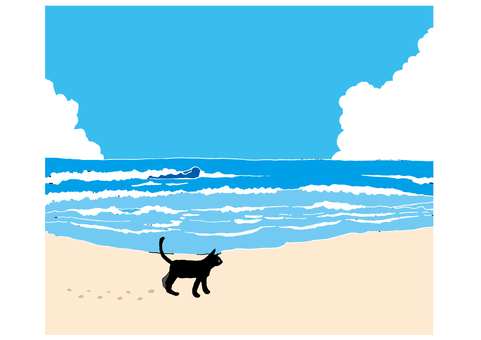Sandy beach and cat