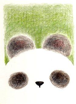 팬더가 좋아!