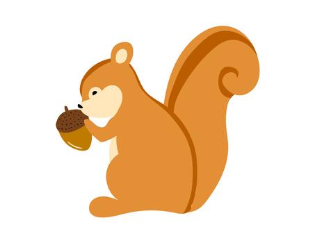 Illustration of squirrel